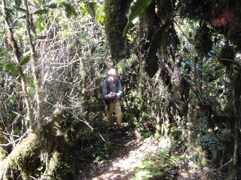 Frederic beim Aufstieg