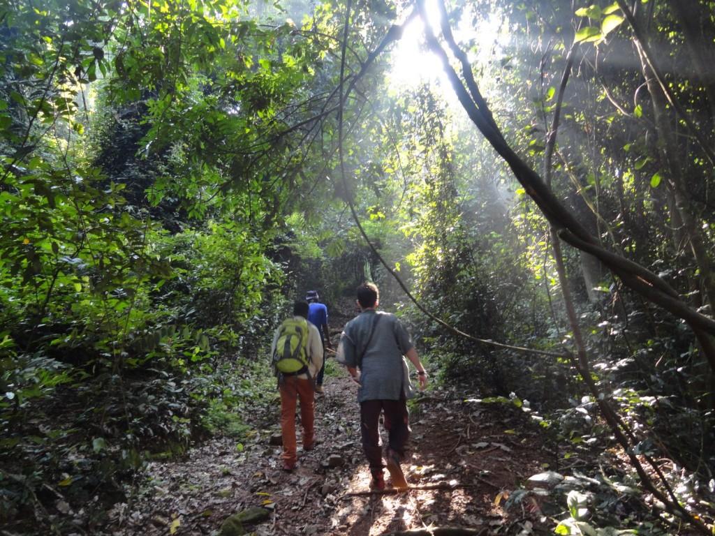 Ersten Schritte im Gombe Steam Nationalpark