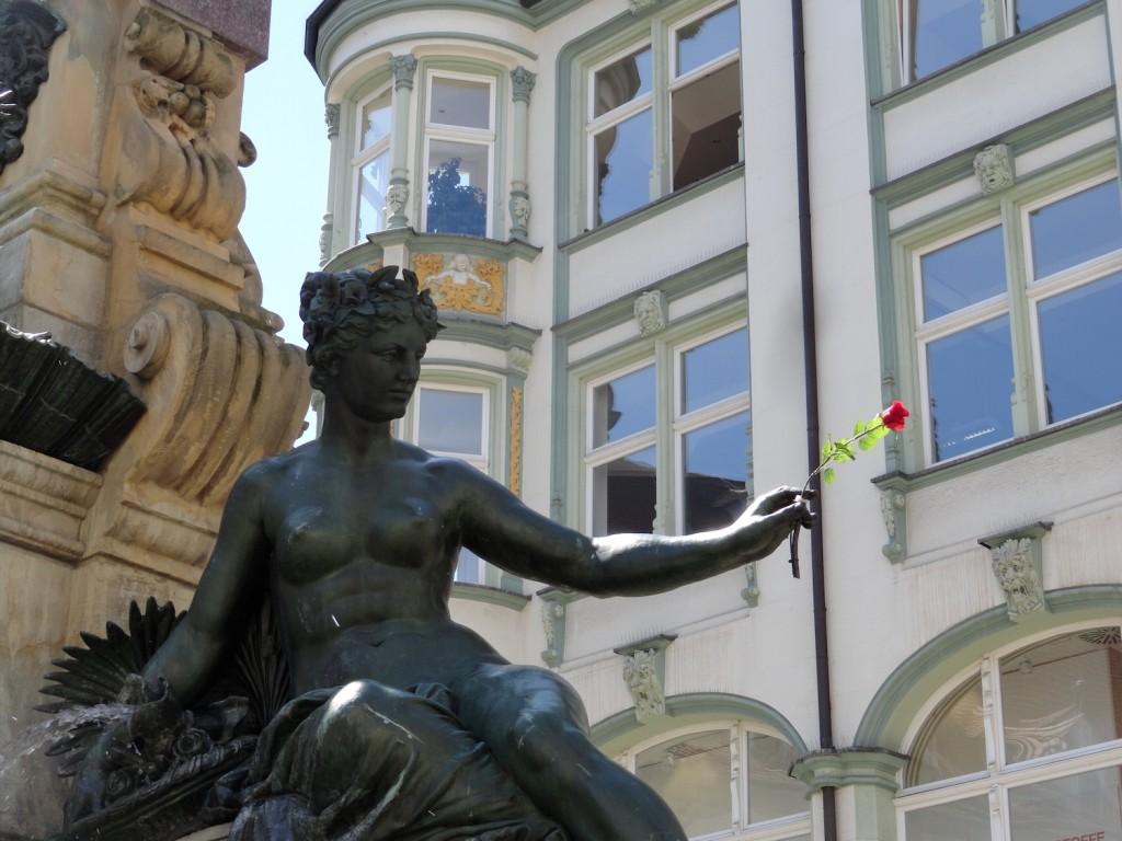 Rose am Angerbrunnen