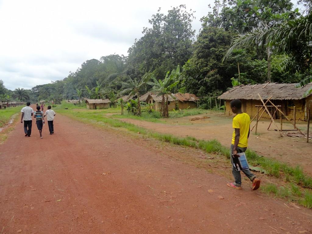 Pygmies village