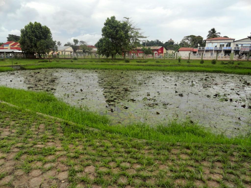 Park in central Mbandaka