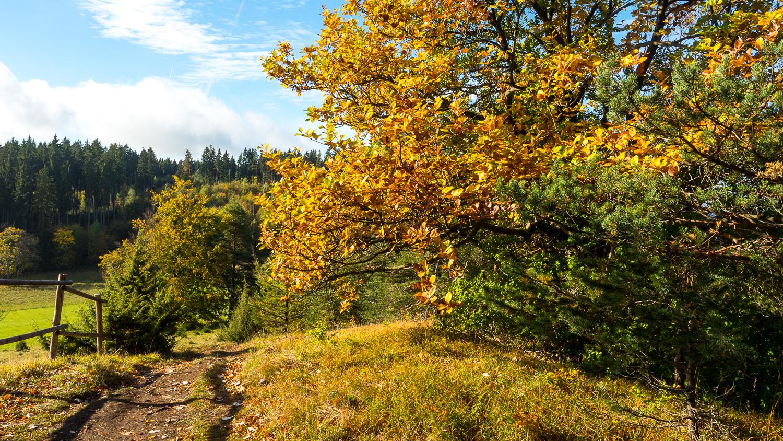 Herbst auf der Schwäbischen Alb