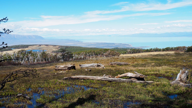 Hochmoor und Blick auf den Lago Viedma