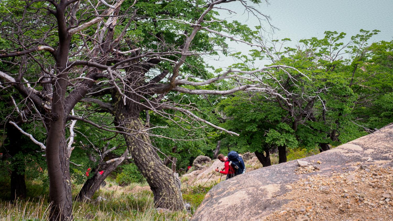 Steiler Abstieg zum Lago Viedma