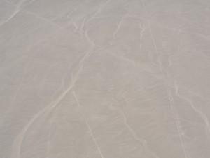 Nazca-Linien: Affe (ohne Nachbearbeitung)