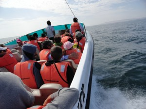 Mit dem Schnellboot unterwegs