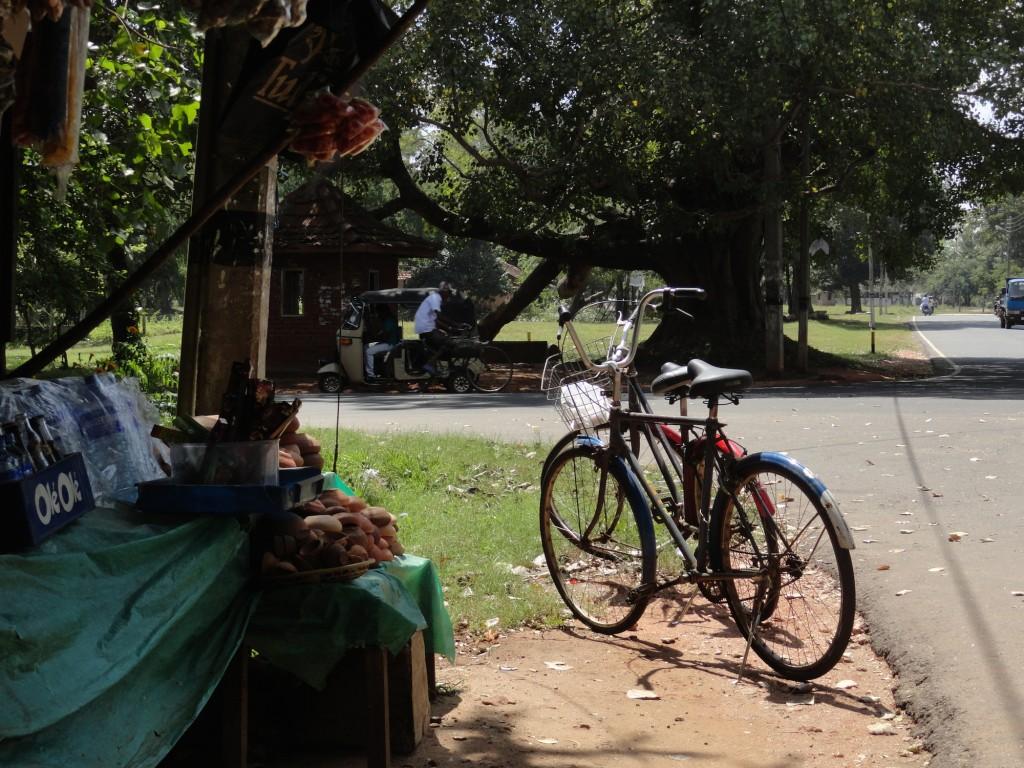 Fahrrad in Anuradhapura