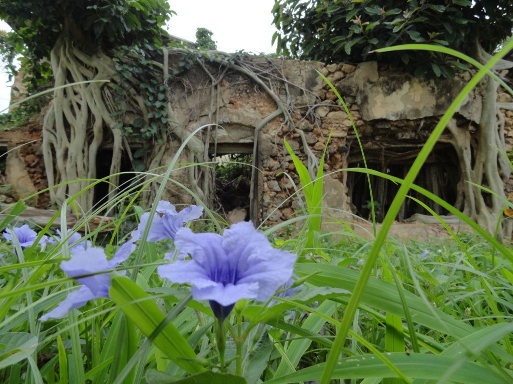 Ruine an der Küste von Lindi