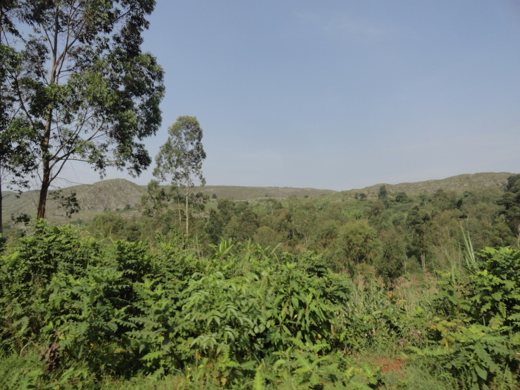 Burundis Berge in der Grenzregion zu Tansania