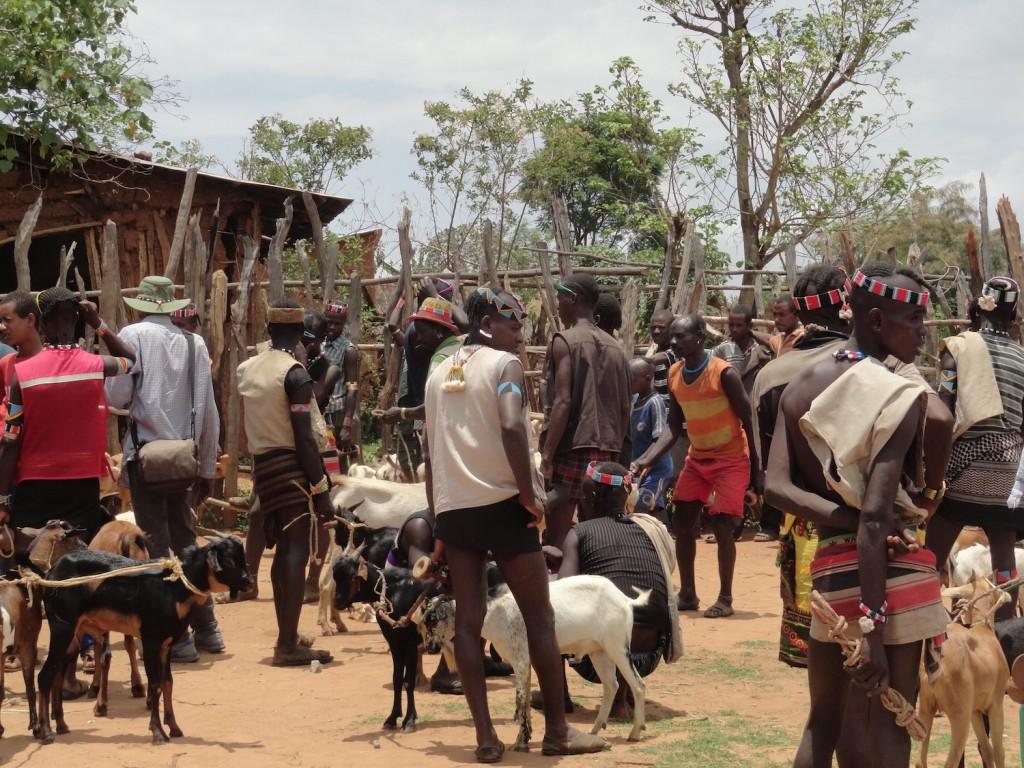 Stimmt der Preis - Viehmarkt von Keyafer