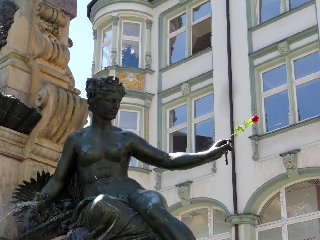 Rose am Angerbrunnen