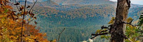 Landschaft um den Berg Snežnik