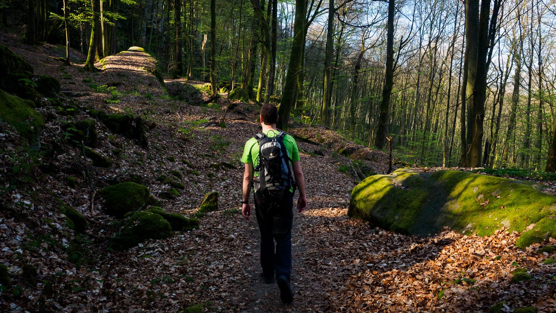 Wanderung im Müllerthal