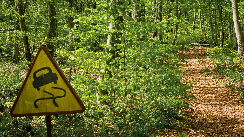 Vent des Forêts in Lothringen